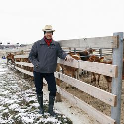 State Climatologist Bryan Mark stands in front of a line of dairy cows at Watermand Farm on a cold, cloudy February day.