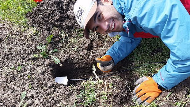 Undergraduate Researcher Stephen Maldonadao finishes inserting soil moisture probe in place at OARDC-Northwest.